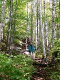 Catamount Trail 0830.jpg