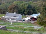 Row Farm 2003