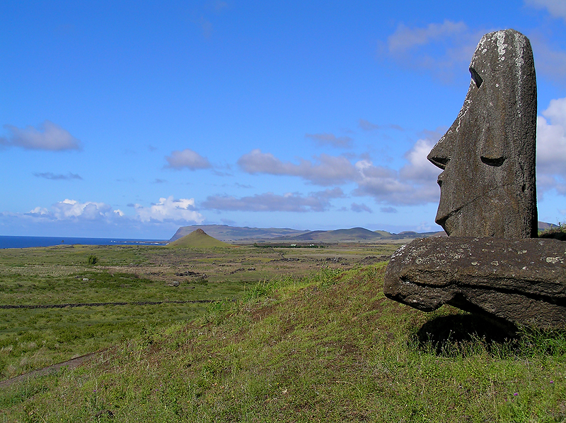 At the quarry moai face the sea, ready for transport