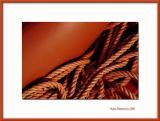 Orange rope, Neuilly/Marne