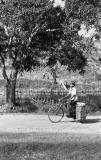 Bicycle with Saddlebags