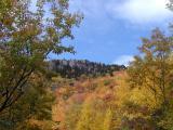 Mountain Scenery1
