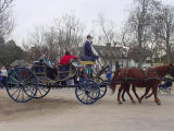 This seemed to be a popular mode of transportation.  Carriage rides were sold out both days!
