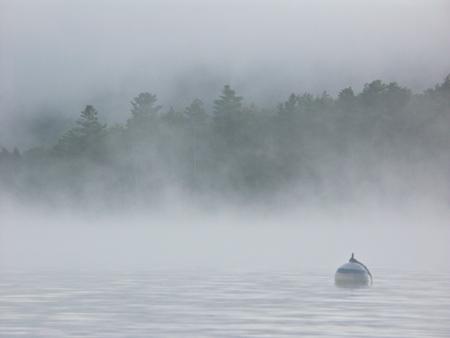 80_fog_buoy_gd_ps_4w.jpg