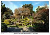 Japanese Tea Garden at Central Park - San Mateo
