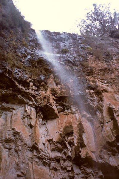One of the many waterfalls in the Glasshouse Mts.  (6K hike, whew!)