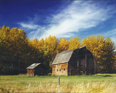 barn. near Grimshaw, Alberta