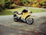 Jim Dickinson's Mellow Yellow