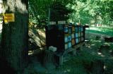 Camp-King Oberursel im Bau_063.jpg