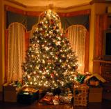 Holiday Season 2004