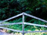 040815 Fence