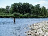 July 3, 2000 --- Bow River, Alberta