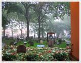 St. Paul's Chapel in the Rain