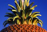 Waterfront Park Pineapple Fountain Closeup