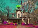 Propst House in false color IR