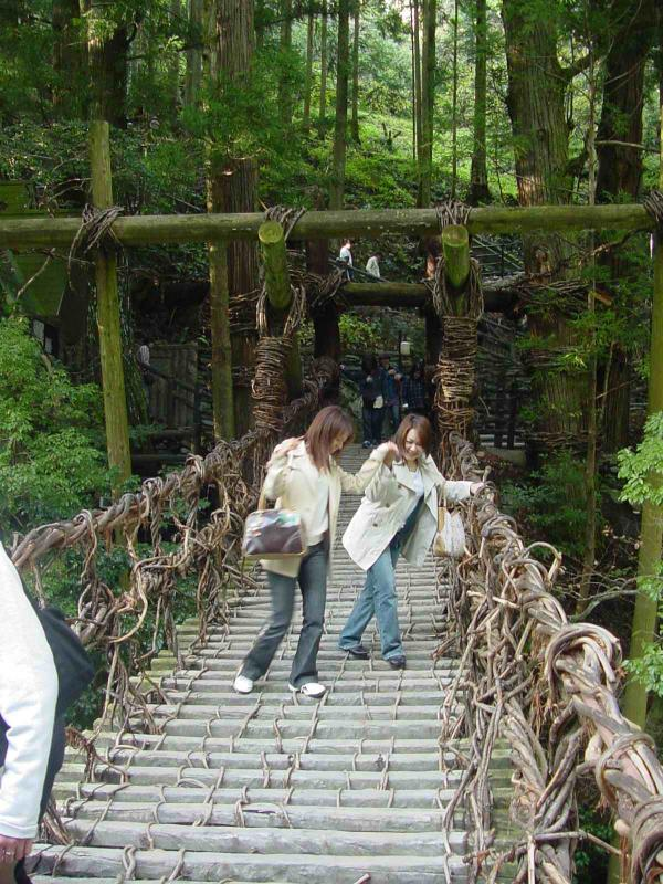 Kazurabashi Bridge-