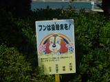 Shodoshima-Tonosho Port area