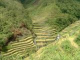 Banaue and Around