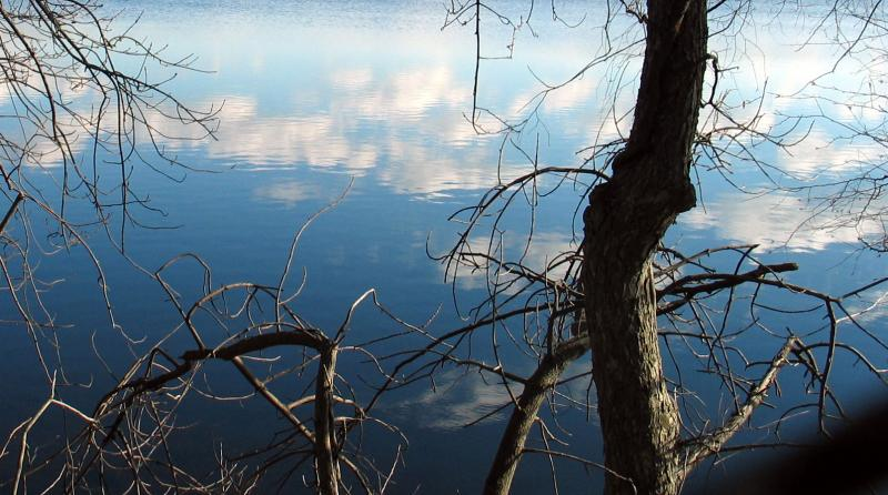 Reflected clouds in water