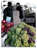 Fruitsellers, Haymarket