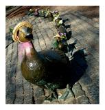 Easter Ducklings - Public Garden