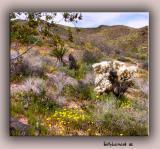 Hondo Canyon