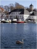 Brevik Harbour and Swan