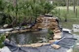 Add Water Plants.jpg