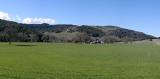 Green pastures panorama