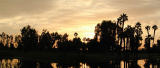 Desert sunset panorama
