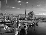 Sailboat harbor (infrared)
