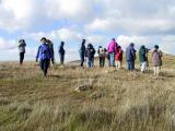 Birding Class Field Trips