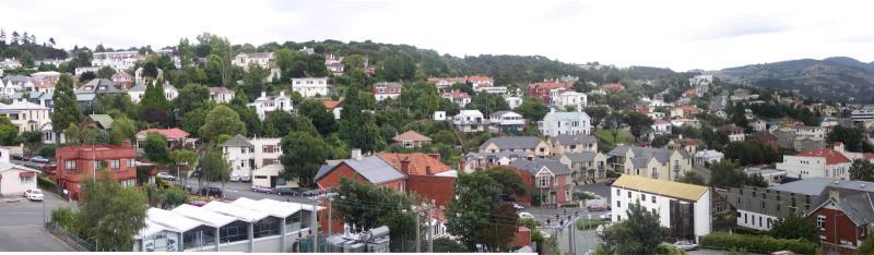 Panoramic view of Dunedin hillside