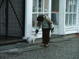 Katter og piker er det paa Bryggen