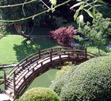 Japanese Garden  -  Huntington Library - CP990