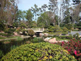 Japanese Garden- Cal State Long Beach