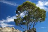 Mount Macedon Skies