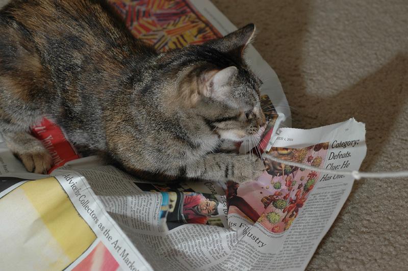 String Under the Newspaper