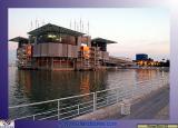 Oceanário - Finally, the Fair main attraction where the oceans habitat of the whole world are reproduced