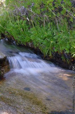 Chilnualna Falls Trail