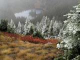 Wenatchee N.F. - Thorp Mountain