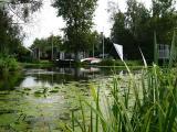 Reeuwijkse plassen 22 augustus 2004