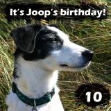 Joop's Dog Log - Thursday August 19