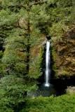 040821 Drift Creek Falls
