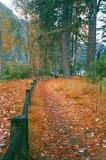 Yosemite... Fall, Winter, Spring... Again and Again...(2001-2007)