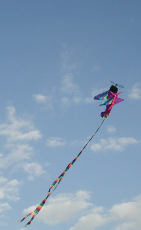 My twin grand sons kite...