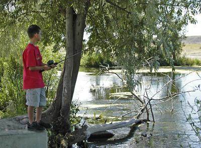 Serene Fishing