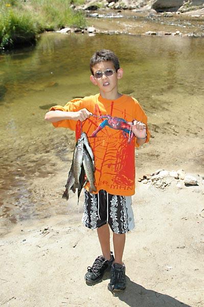Silver Creek fishing