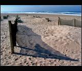 07.12.2004 ... At the beach ...