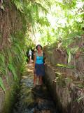 to get out, we had to wade through this water channel that goes underground with grass going around your feet, or you hope it is